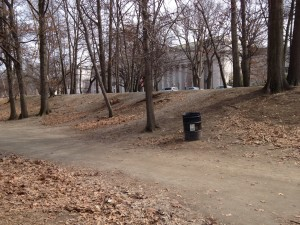 Unpaved section of Emerald Necklace Park in the Fens