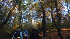 Blue Hills Reservation with Mothers of Adventure, October 2014